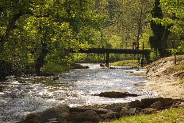 streamside-cabins-asehville-nc1