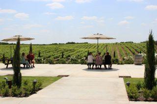 madera-wine-trail